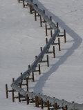 Alaska Pipeline, Alaska Photographic Print by Michael S. Quinton