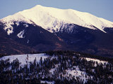 Forested Slopes of the San Francisco Peaks Photographic Print by David Edwards