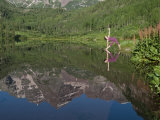 Young Woman Practicing Yoga in a Scenic Mountain Lake Landscape Impressão fotográfica por Pete McBride