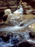 Stream Flows Through the Grand Canyon Photographic Print by David Edwards