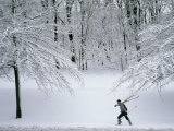 Skier Carries Skis and Poles Through Snow in Schenley Park Photographic Print by Lynn Johnson