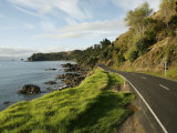 On the Road around the Coromandel Peninsula, New Zealand Photographic Print by Dawn Kish
