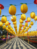 Paper Lanterns Put on Display During the Annual Lantern Festival Photographic Print by  xPacifica