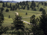 Lone Car Drives Through the 'Wildlife Loop' in Custer State Park Photographic Print by Paul Damien