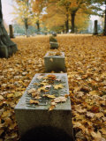 Fall Leaves Surround a Grave Stone in a Wellsville New York Cemetery Photographic Print by Scott Sroka