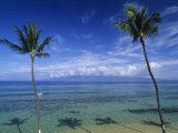 Palm Tree Shadows at Kaanapali Beach and Molakai Island in Distance