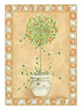 Tuscan Fruit I Prints by Chariklia Zarris