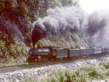 Ex-Southern Railway 2-8-2 4501 on a Steam Fan Trip Fotografie-Druck von Kent Kobersteen