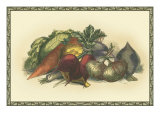 Vegetables from the Earth Premium Giclee Print