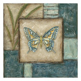 Butterfly Montage I Poster by Chariklia Zarris