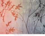 Fall Foreshadowed Prints by Linda Yoshizawa