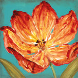 Flame Tulip II Prints by Karen Leibrick
