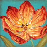 Flame Tulip II Prints by Karen Leibrick