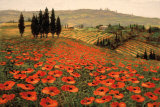 Hills of Tuscany I Poster by Steve Wynne