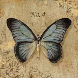 Clair's Butterfly I Prints