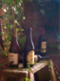 Wine Cellar II Prints by Donna Geissler