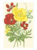 Summer Garden II Poster by Anne Pratt