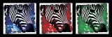 Pop Zebra Posters by Susann & Frank Parker
