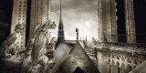 Gargouilles de Notre Dame, Paris Affiches par Stephane Rey-Gorrez