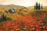 Hills of Tuscany II Poster von Steve Wynne