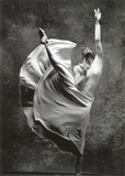 Dancer Print van Stephen Wilkes