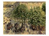 Place Du Theatre Francais, 1898 Premium Giclee Print by Camille Pissarro