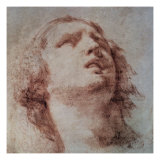 Study of a Head Looking Up Premium Giclee Print by Pietro Berrettini