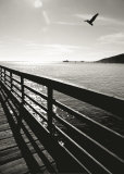 Wooden Walkway, Avila Beach Prints by Ethel Davies