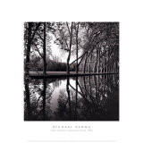 Alle'e d'Honneur, Coarances, France Pósters por Michael Kenna