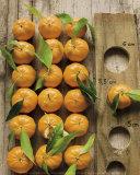 Clementinen Kunstdrucke von Federic Vasseur