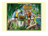 A Company of Parrots Stampe di Kelly, Richard