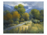 A Change of Seasons Giclee Print by David Marty