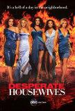 Desperate Housewives Masterdruck