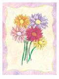 Gerber Bunch Giclee Print by Flavia Weedn