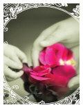 Rose Petals Posters