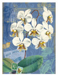 Vintage Botanica Flower Print Giclee Print by Bessie Pease Gutmann