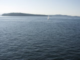 Sailboat on the Puget Sound Passes Blake Island, Washington State, United States of America Photographic Print by Aaron McCoy