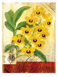 Vintage Botanica Flower Print Prints by Bessie Pease Gutmann