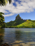 Opunohu Bay and Mount Mauaroa, Moorea, French Polynesia, South Pacific Ocean, Pacific Photographic Print by Jochen Schlenker