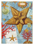 Vintage Botanical Starfish Print Posters by Bessie Pease Gutmann