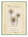 Wishes Pster