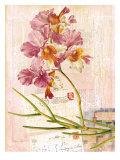 Vintage Botanica Flower Print Art by Bessie Pease Gutmann