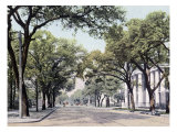 Government Street Looking West Mobile Alabama Posters