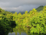 Mount Tefatua and Tropical Rainforest, Raiatea, French Polynesia, South Pacific Ocean, Pacific Photographic Print by Jochen Schlenker