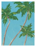 Palm Tree Sway Prints by Flavia Weedn