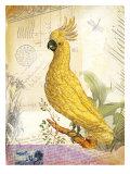 Vintage Botanical Cockatoo Print Print by Bessie Pease Gutmann