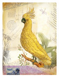 Vintage Botanical Cockatoo Print Giclee Print by Bessie Pease Gutmann