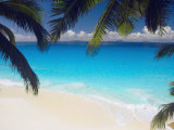 Empty Beach and Palms Trees, Seychelles, Indian Ocean, Africa Photographic Print by Sakis Papadopoulos