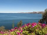 Suasi Island, Lake Titicaca, Peru, South America Photographic Print by Michael DeFreitas
