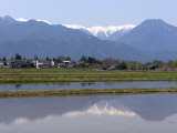 View of the Northern Alps Reflected in a Flooded Rice Paddy, Nagano Prefecture, Japan Photographic Print